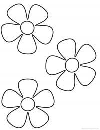 Три цветка с пятью листьями Раскраски детские с цветами