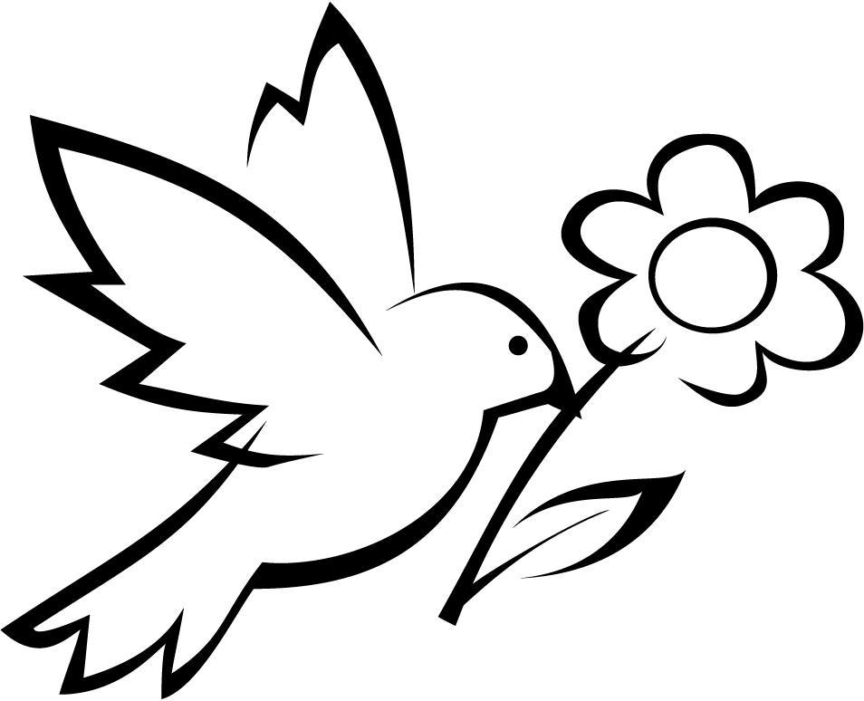 Голубь с цветком Раскраски детские с цветами