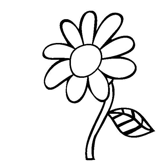 Подсолнух с листком Раскраски детские с цветами