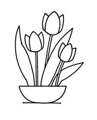 Тюльпан для маленьких Раскраски детские с цветами