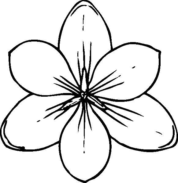 Цветок один раскраска