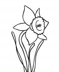 Нарцисс Раскраски детские с цветами