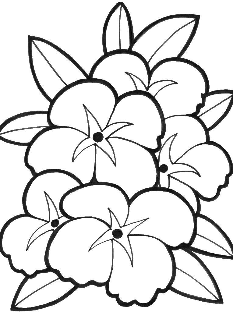 Для детского сада Раскраски цветочки  для девочек