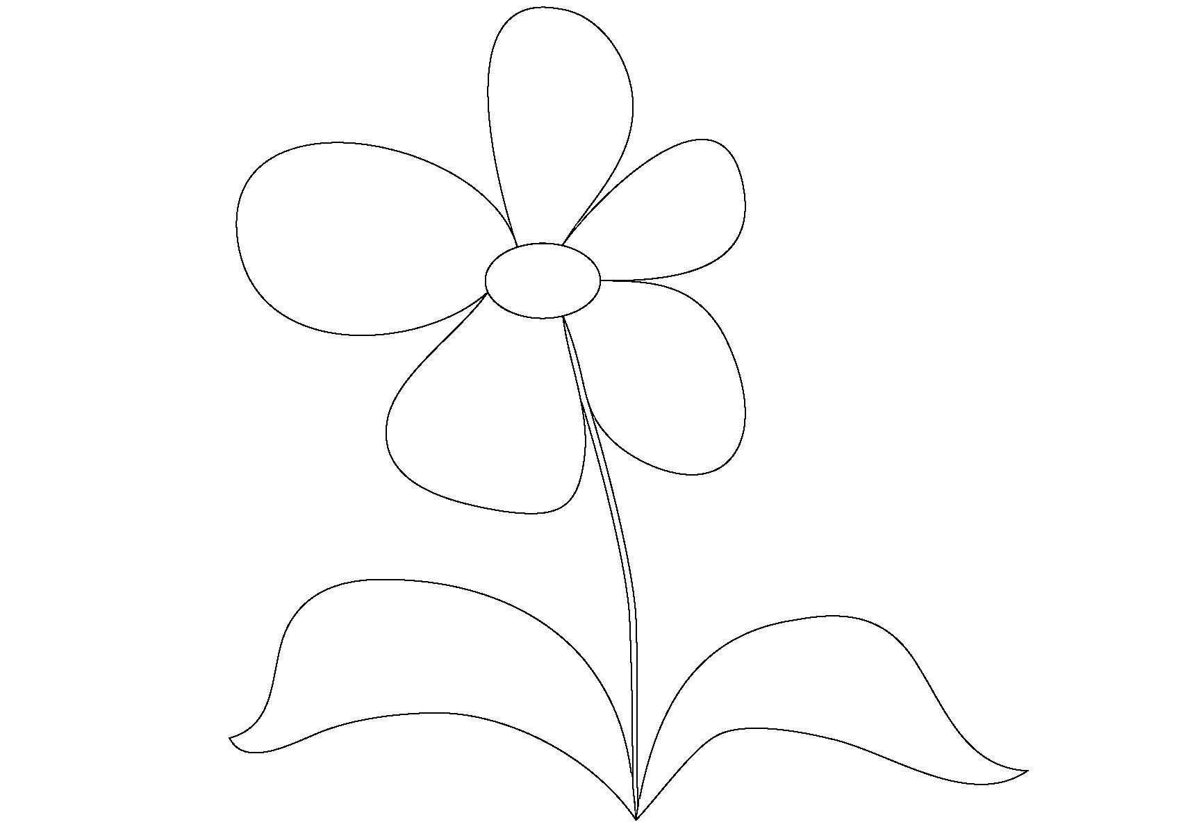 Незабудка Раскраски цветы скачать