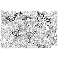 Бабочки и цветы Распечатываем раскраски цветы бесплатно