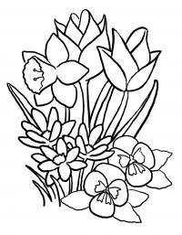 Цветы букет цветов раскраска