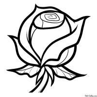 Бутон розы раскраска