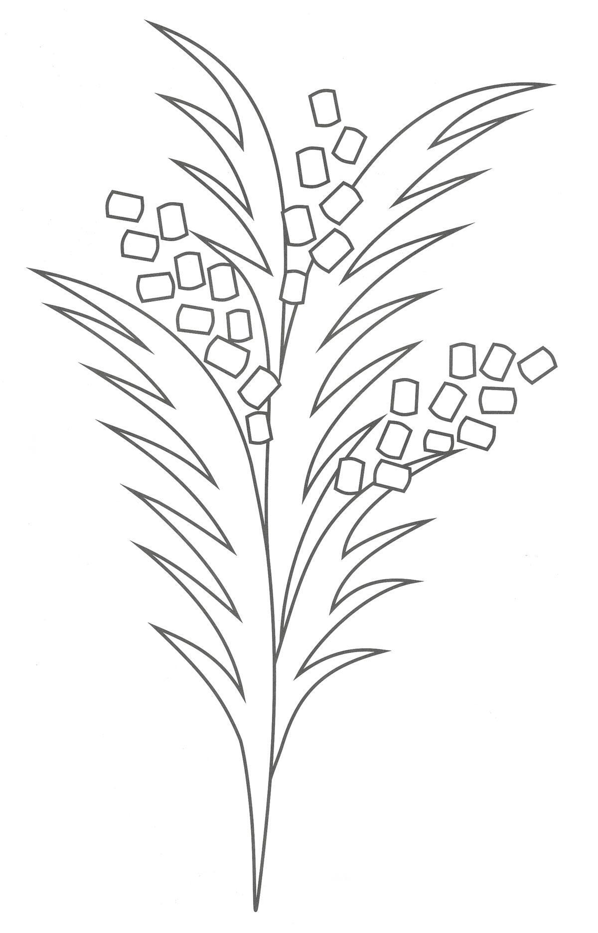 Шаблон для изготовления аппликации мимоза для мамы