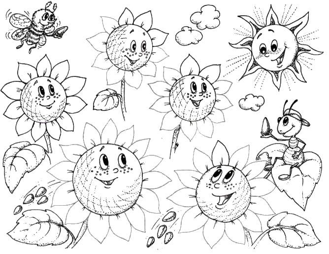 Веселые подсолнухи с семечками и пчелками