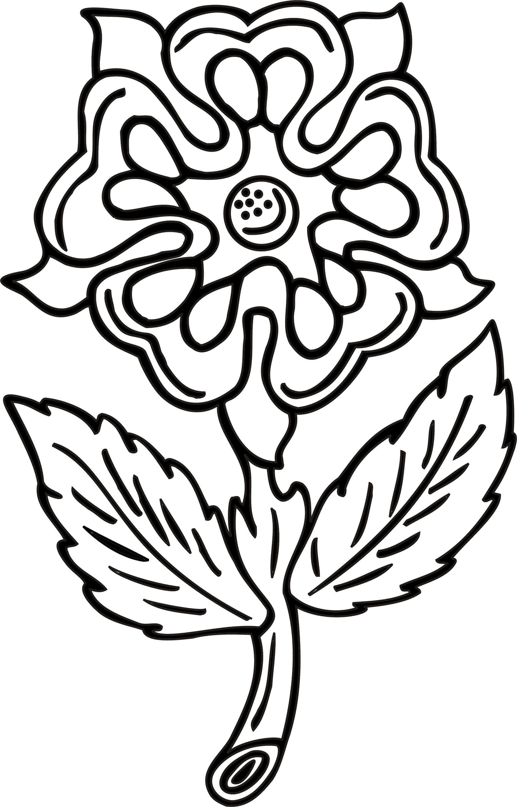 Лепестки цветов, ажурный цветок
