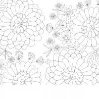 Раскраски антистресс цветочное поле