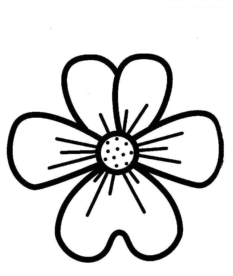 Для малышей большой цветок