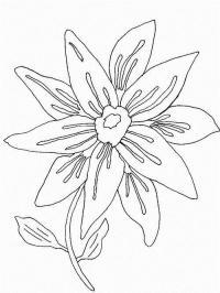 Цветок с лепестками в два яруса