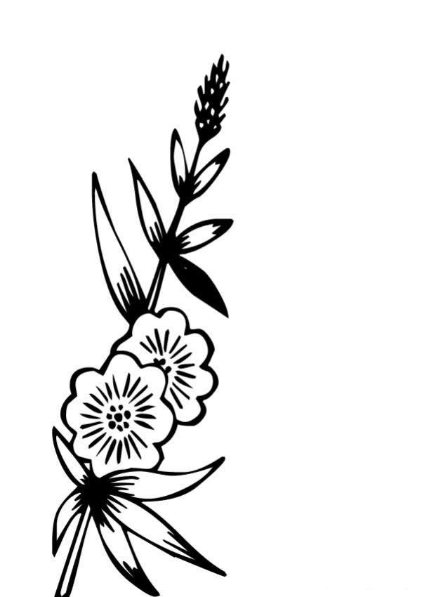Узоры цветочки