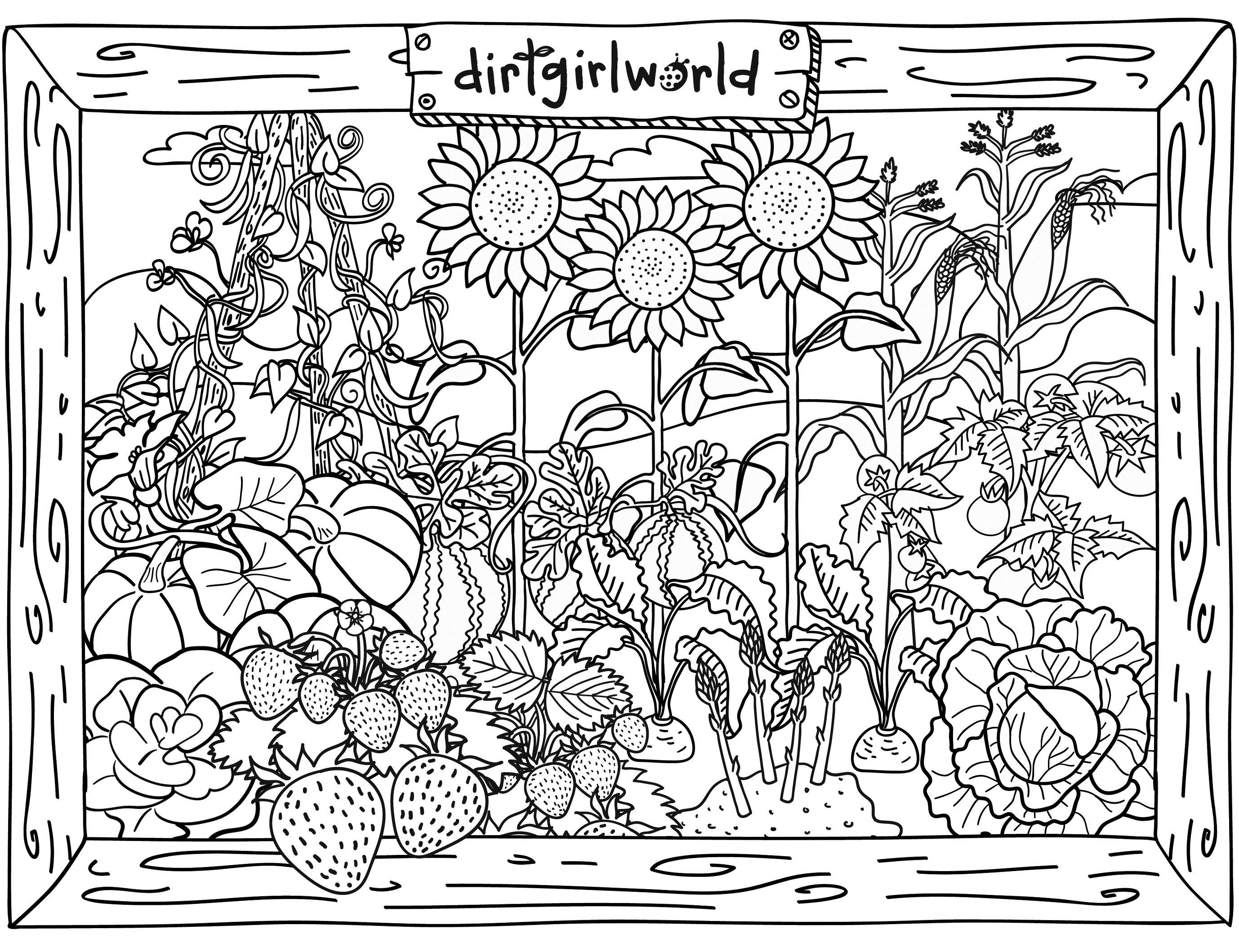Клумба цветов, подсолнухи, земляника и овощи