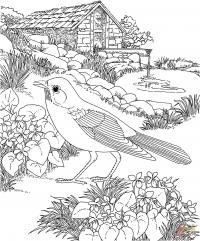 Птица на клумбе с цветами