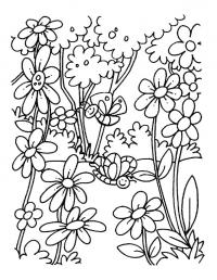 Бабочки над полянкой цветов