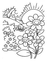 Полянка цветов под восходящим солцем
