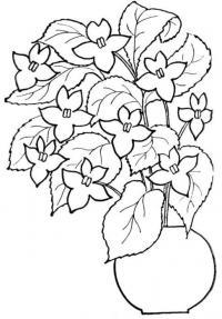 Контур цветка цветов в вазе