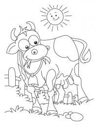 Корова греется на солнце и жует траву