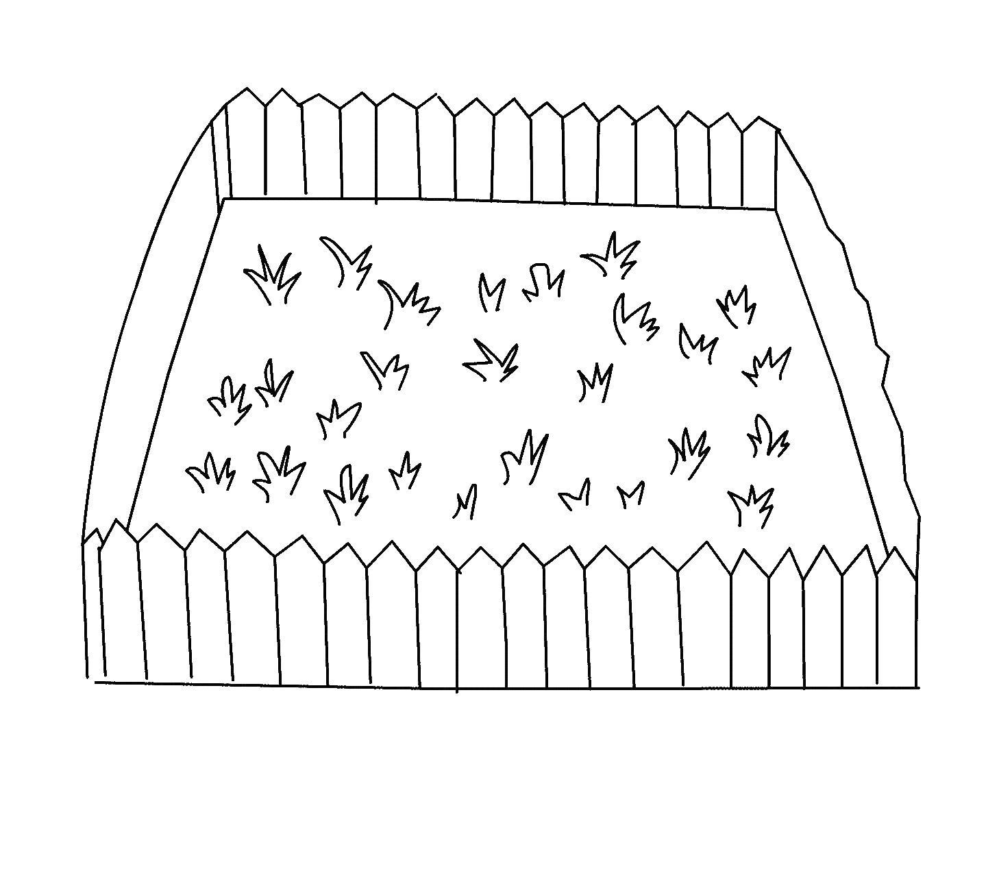Трава и цветы на участке с забором