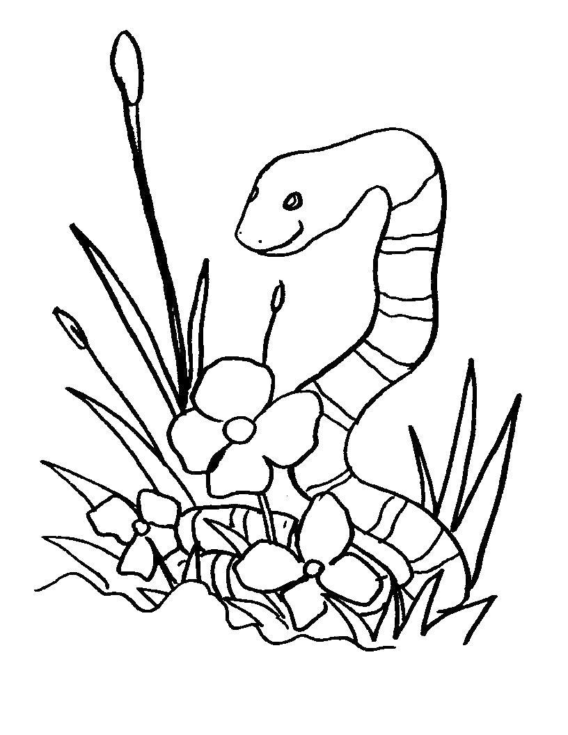 Змея прячется среди травы и цветов