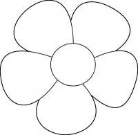 Крупный простой цветок
