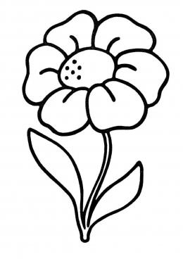 Цветы по названиям